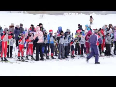 Лыжня России Амурск - лыжные гонки 16.02.2014