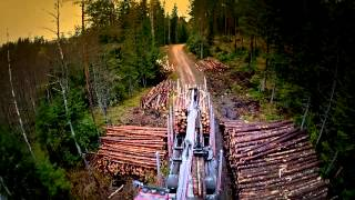 Gambar cover A day in the life of a forestry truck driver