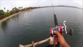Dock fishing Tarpon