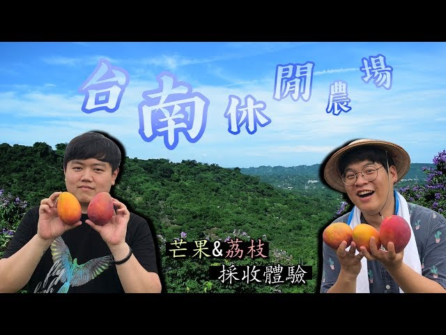 在台南的休閒農場訪問記, 芒果與荔枝的採收體驗! 韓國歐巴 胖東&Jaihong