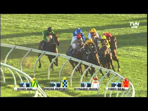 2014 Coolmore Flight Stakes - First Seal