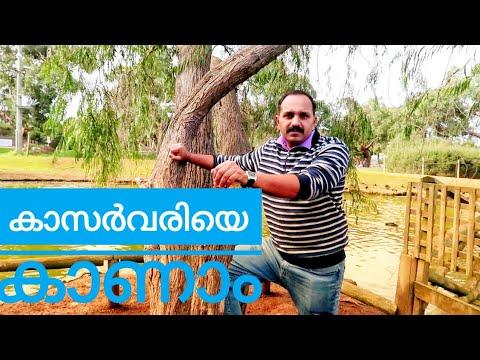 Wild Australia /part  2/Malayalam Travel vlog 12
