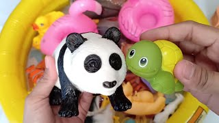 Learn Colors with Zoo Animals Farm Animals Video Education for Fun Kids - Animal Sounds for Children