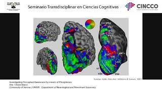 Investigating Perceptual Awareness by means of Phosphenes
