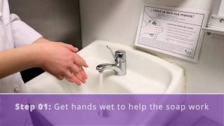 08 How to Properly Wash Hands (English)