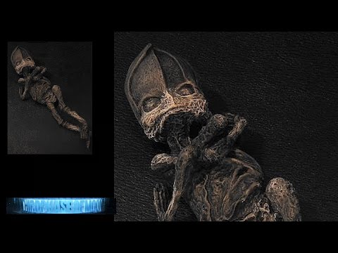 NOW THIS!!! Russian COVER-UP Alien BODY MISSING!!!? ALIEN DNA UNCONFIRMED! SHOCKING EVIDENCE! 2016