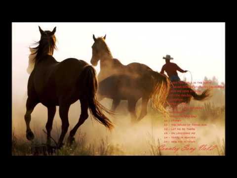 เพลงคันทรี่เก่า เพราะมาก Vol. 2 (Country Song Vol. 2)