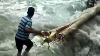 brave uttarakhandi saving drowning animal in floods