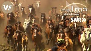 Spaniens wilde Pferde - Länder Menschen Abenteuer (SWR)