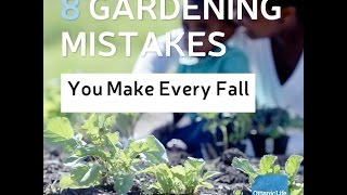 8 Gardening Mistakes You Make Every Fall