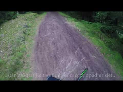 Stendal MTB Trail