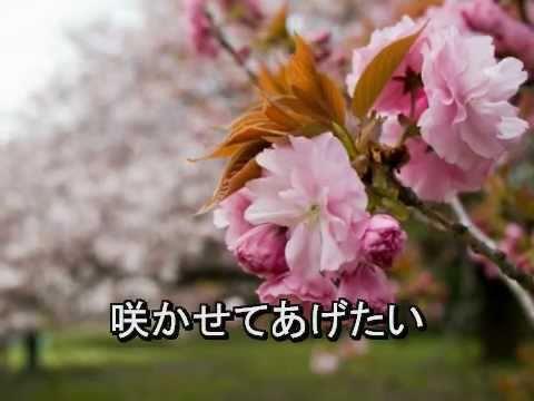 Hana 花 - Instrumental カラオケ