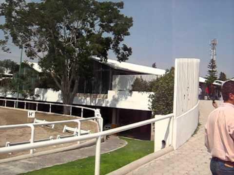 Guadalajara Country Club - Training & Competition Rings