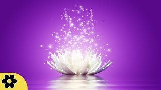 Meditation Reiki Music Relaxation Music Chakra Relaxing Music for
