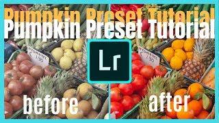 Download Free Pumpkin Preset For Lightroom Mobile Dng