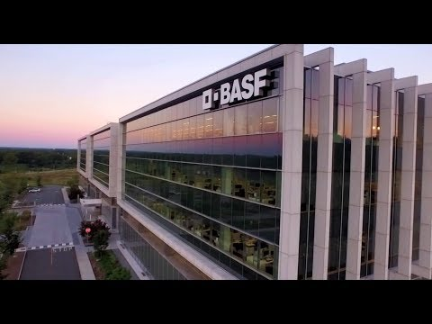 Your BASF Journey