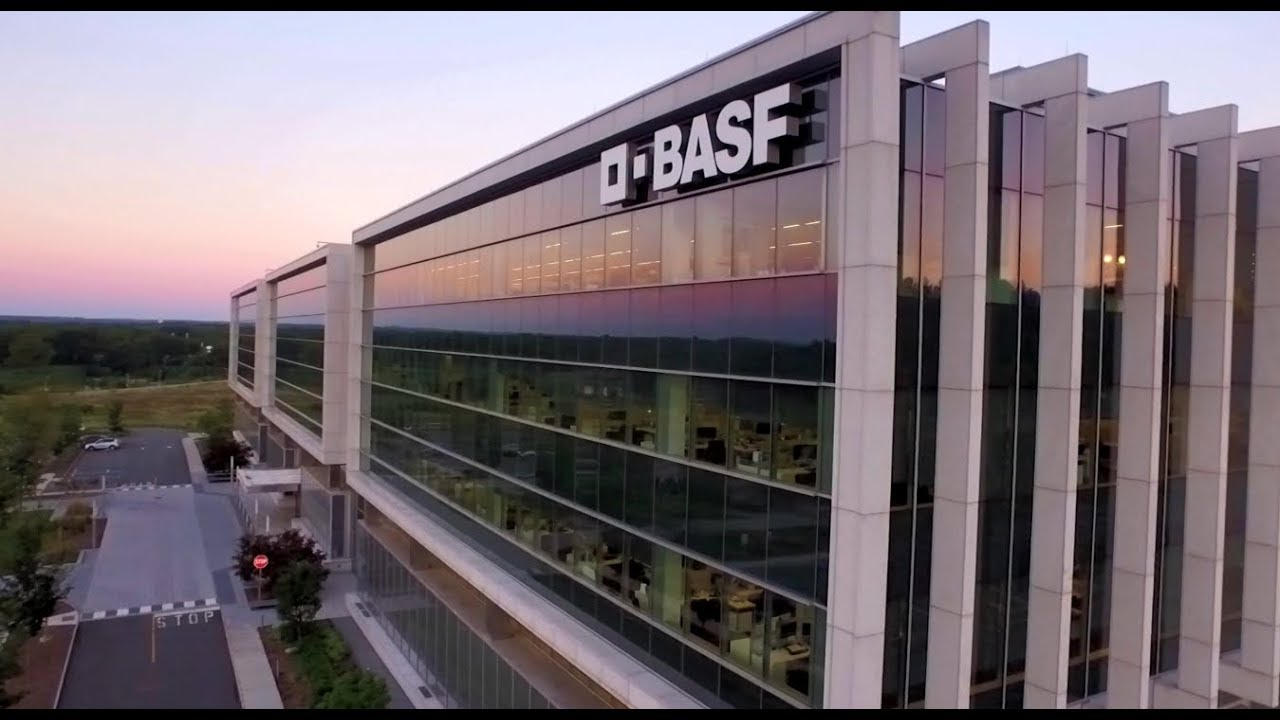 BASF Interview Questions | Glassdoor
