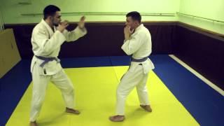 Видео-курс по рукопашному бою от Сосновского А.В. (ПМК