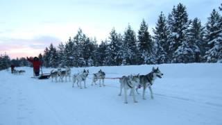 Lake Inari Mobile Cabins hotel city: Inari - Country: Finland Addre...