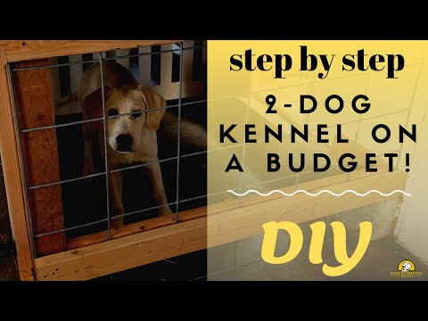 Build A Cheap 2-Dog Kennel In Your Garage