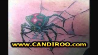 Spinnen Tattoo, Spinne Tattoos, Vogelspinne Tattoo