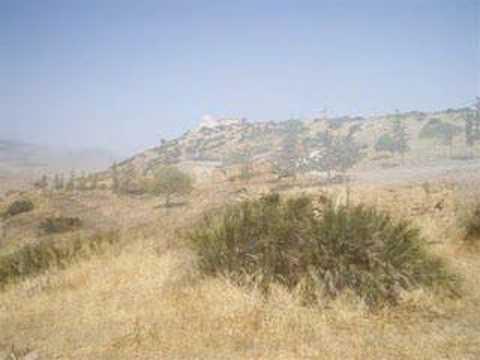 Algérie, monts Tessala