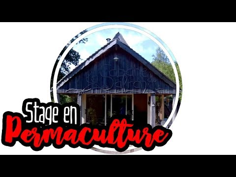 permaculture stage en permaculture youtube. Black Bedroom Furniture Sets. Home Design Ideas
