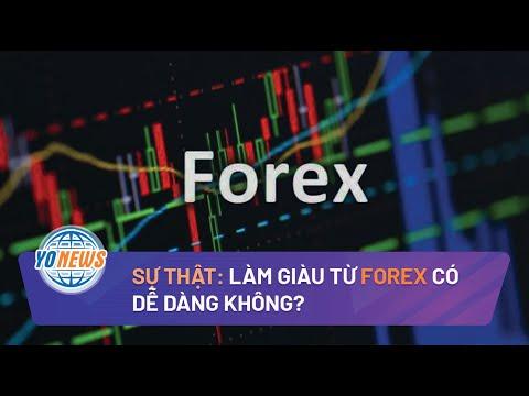 Forex: Làm giàu từ Forex có dễ? | Yo News