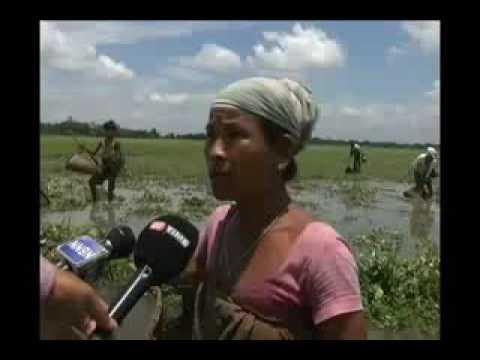 Funny Bodo women speaking to media