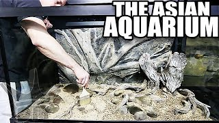 SETTING UP A NEW AQUARIUM!!