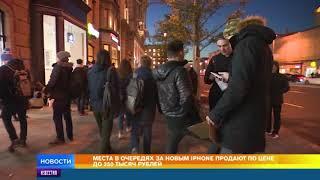 Россияне оценили место в очереди за новым IPhone