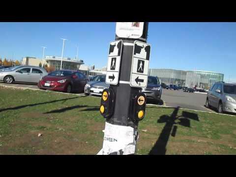 Activating Audible Pedestrian Signal in Mississauga, Ontario, Canada