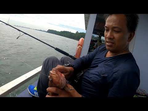 Tenya Madai Fishing - Southern Waters Singapore Aug 2020