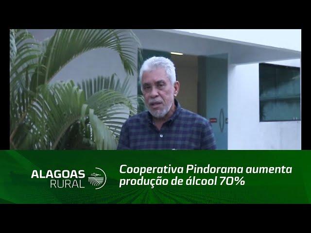 Cooperativa Pindorama aumenta produção de álcool 70%