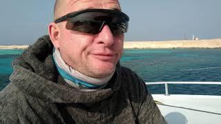 2017 Hurghada RedSeaExplorers safari