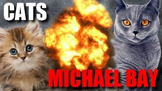 Cat Compilation - Directed by Michael Bay thumbnail