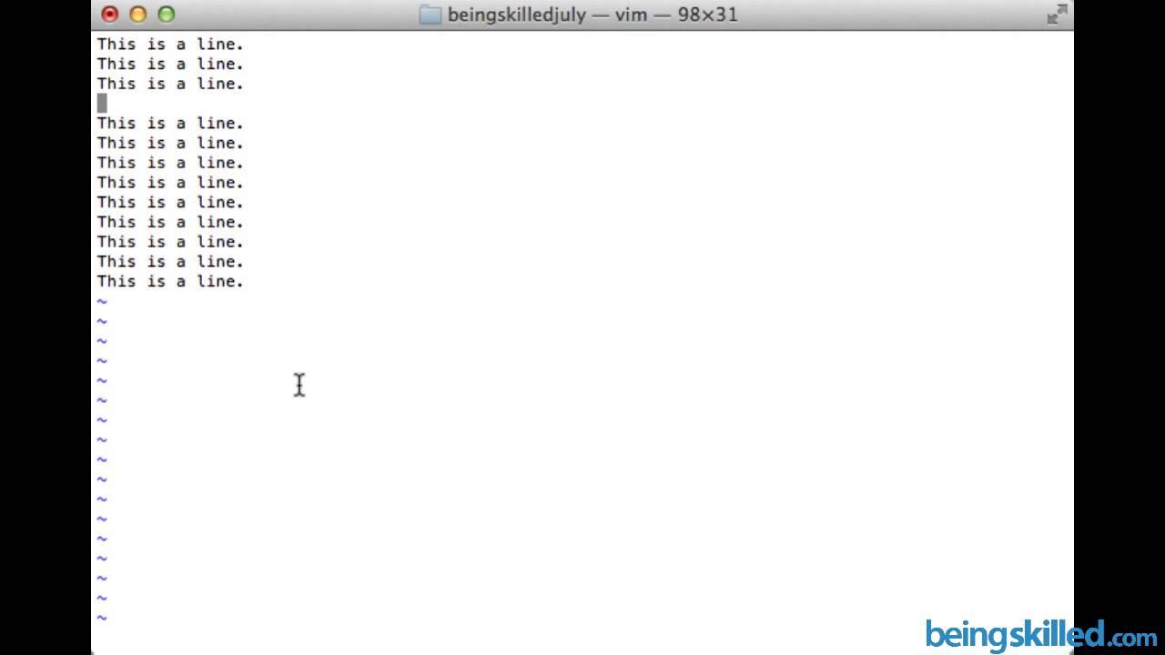 Vi / Vim : How to delete and undelete lines in Vi Editor ...