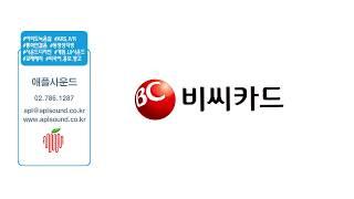 애플사운드 - BC카드 ARS IVR 전화안내멘트 비즈…