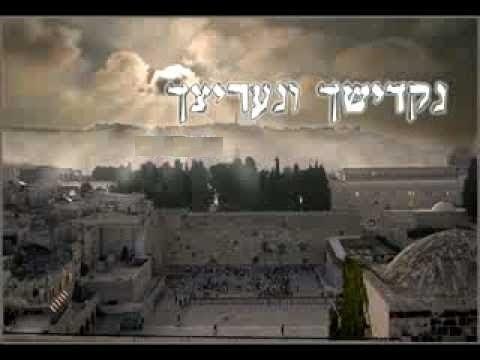מדהים סוד שיח שרפי קודש חידוש נפלא!!! יוסף בלו