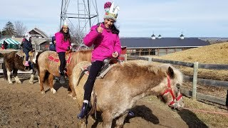 Kids Family Fun Trip to the Farm with Animals and Giant Slides