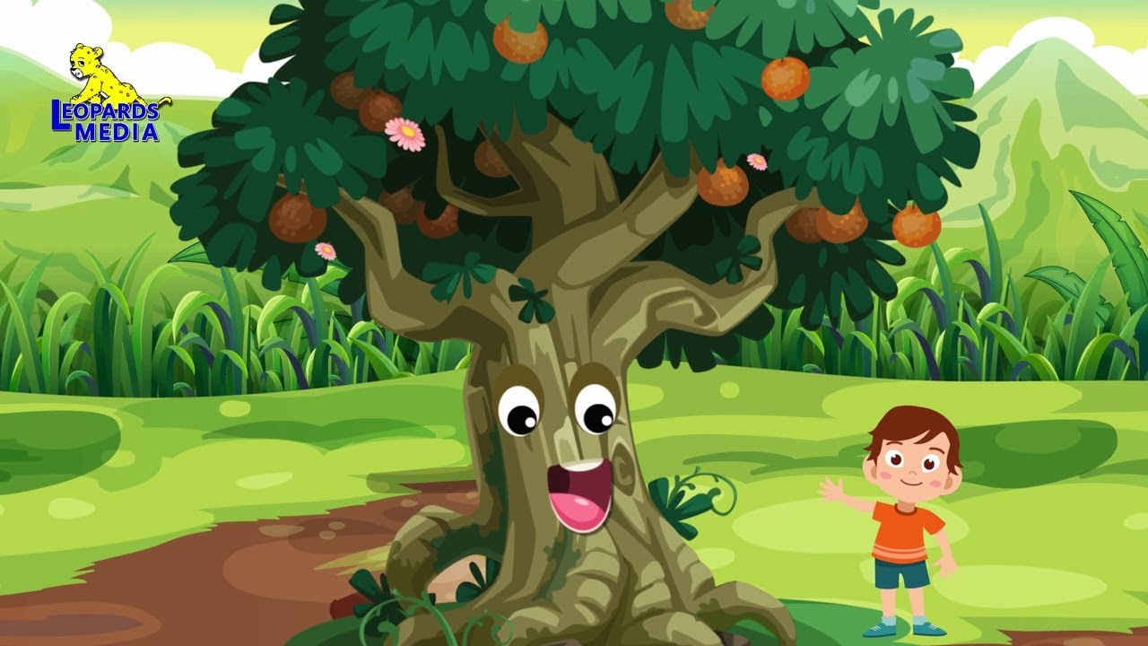 I Am A Big Tree More English Nursery Rhymes Collection English Kids Songs Youtube