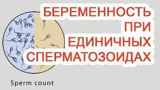 беременность при единичных сперматозоидах / Доктор Черепанов
