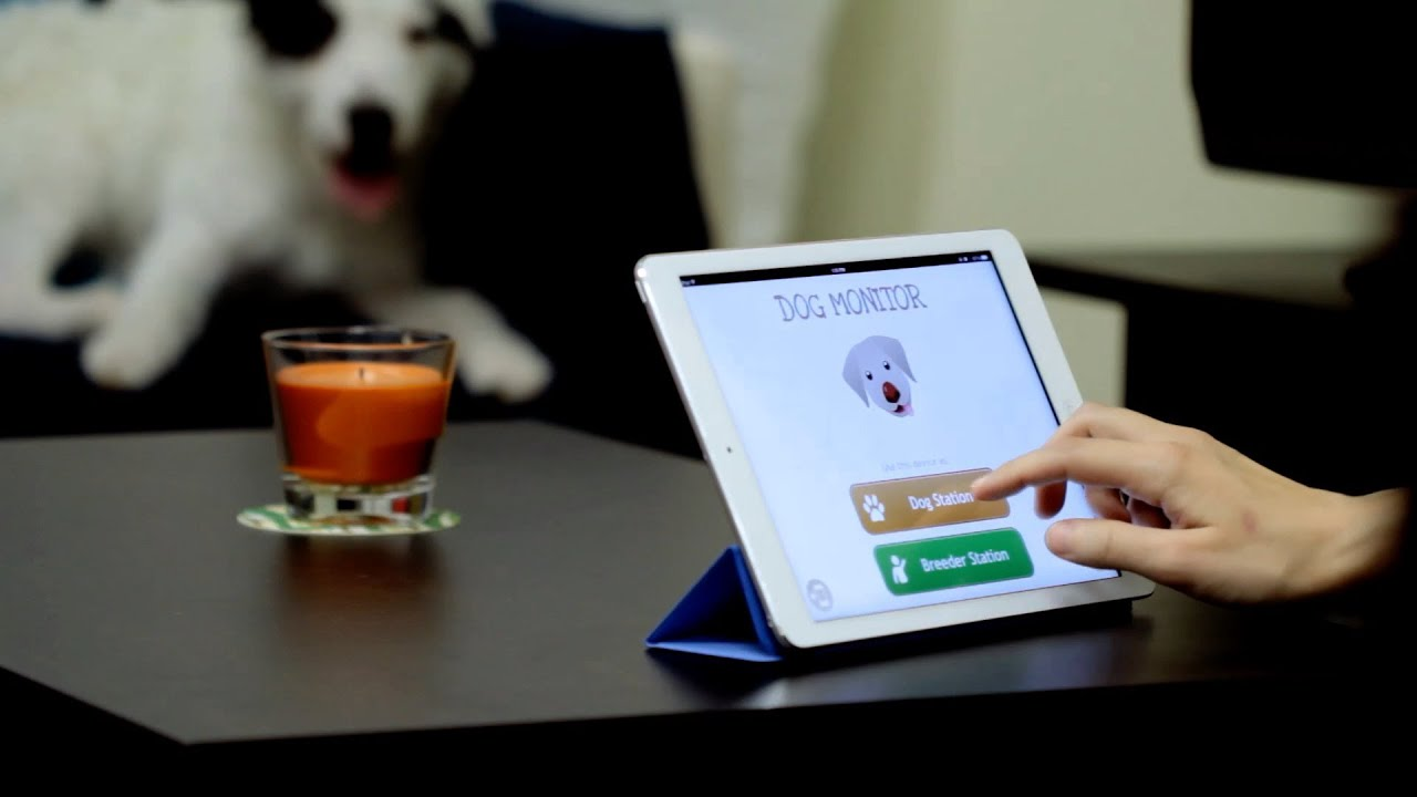 Dog Monitor - Pet monitoring app for iPhone, iPad and iPod touch