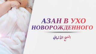 Азан в ухо новорожденного — Шейх Альбани