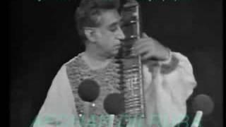 Afghan music at Shiraz Arts Festival, tambur & dilruba solos