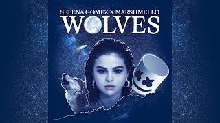 Selena Gomez and Marshmello Wolves Extended