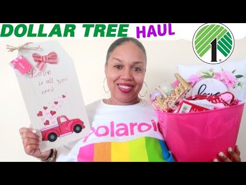 DOLLAR TREE HAUL * NEW FINDS!!!