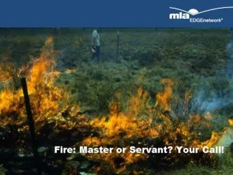 Fire - master or servant? Your call!