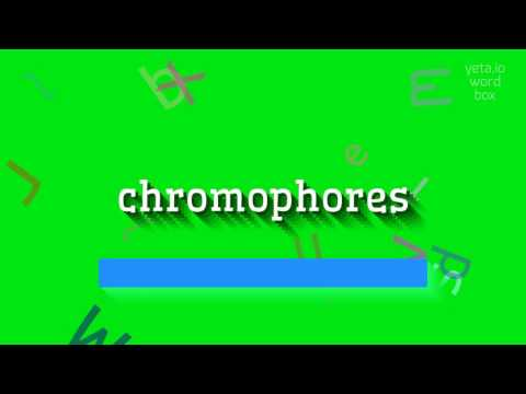 "How to say ""chromophores""! (High Quality Voices)"