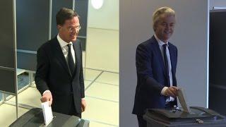 Dutch vote in key test for far-right